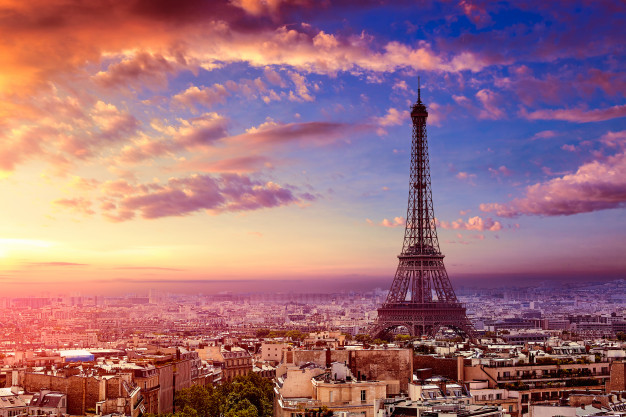 dératisation Paris 1er